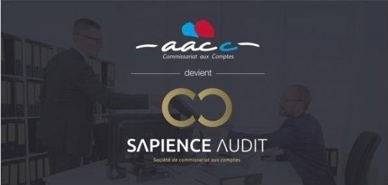 Sapience Audit